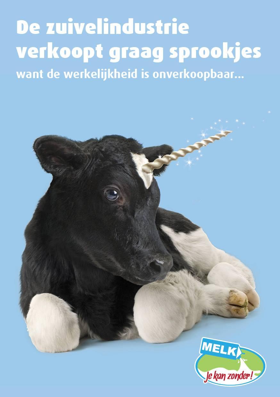 (Nederlands) kalfje